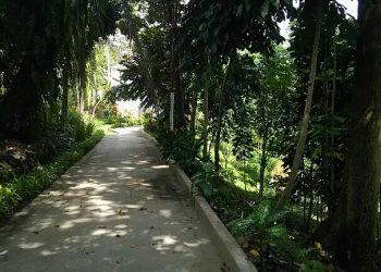 Taman Kehati kota Pematangsiantar, Jumat (14/12). (isiantar/nda).